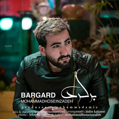 دانلود موزیک جدید محمد حسین زاده برگرد
